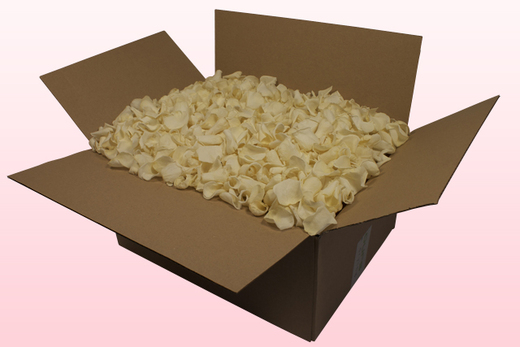 24 Litre box With Preserved Champagne Rose Petals