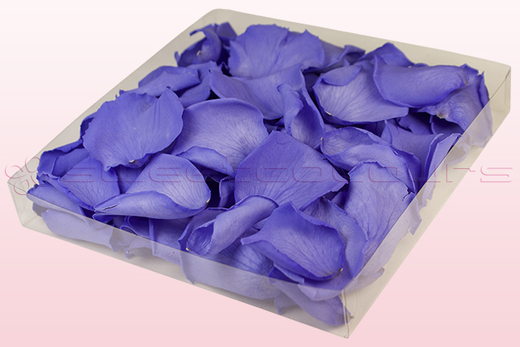 1 Litre Box Of Preserved Lilac Rose Petals