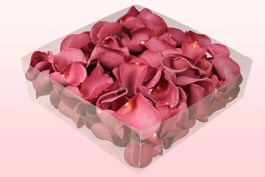 2 Litre Box Mulberry Freeze Dried Rose Petals
