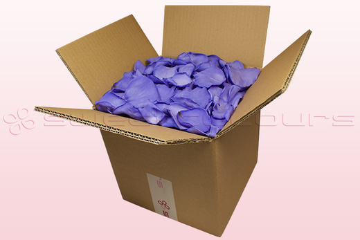 8 Litre box With Preserved Lilac Rose Petals