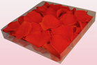 Final check preserved rose petals  1 litre box  orange  sweet colours