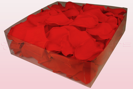2 litre Box Of Preserved Orange Rose Petals