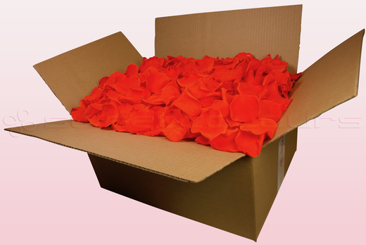 24 Litre box With Preserved Orange Rose Petals