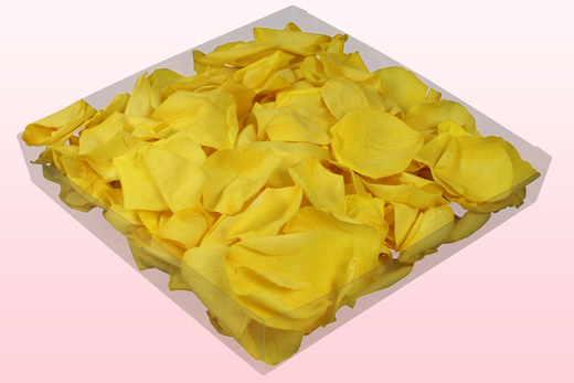 1 Litre Box Of Yellow Preserved Rose Petals