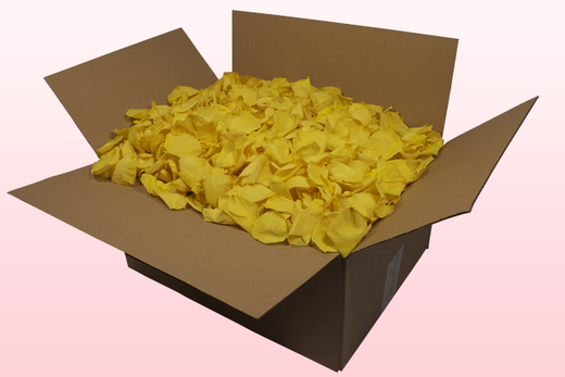 24 Litre box With Preserved Yellow Rose Petals
