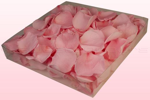 Confezione da 1 litro con petali di rosa stabilizzata di colore rosa chiaro.