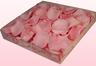 1 Liter Doos Geconserveerde Rozenblaadjes In De Kleur Lichtroze