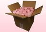 Confezione da 8 litri con petali di rosa stabilizzata di colore rosa chiaro.