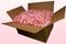 24 Liter Doos Geconserveerde Met Lichtroze Rozenblaadjes