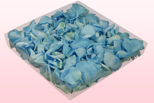 1 Litre Box Of Preserved Light Blue Rose Petals