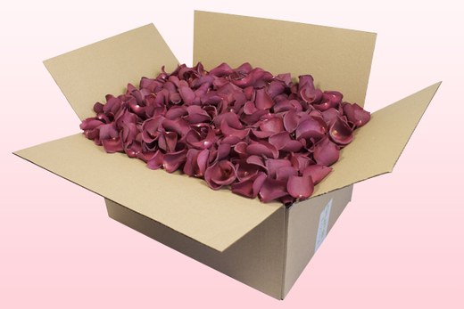 24 Litre Box Mulberry Freeze Dried Rose Petals