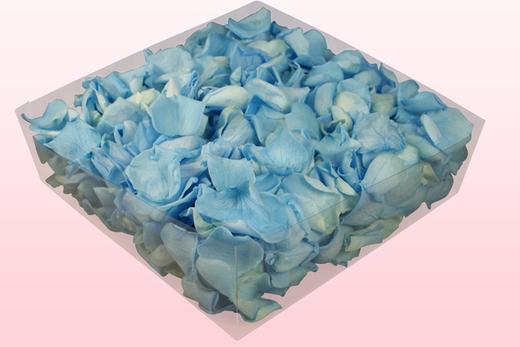 2 Liter Doos Geconserveerde Rozenblaadjes In De Kleur Lichtblauw