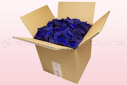 8 Litre box With Preserved Dark Blue Rose Petals