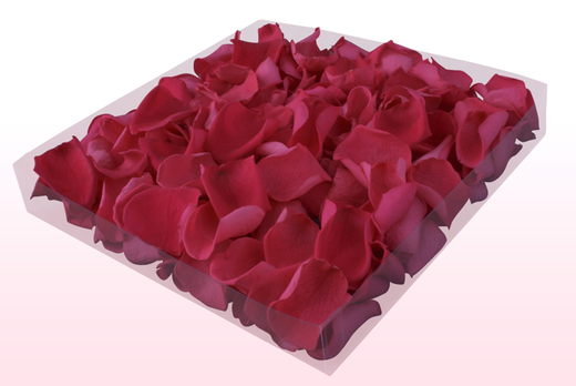 1 Litre Box Of Preserved Fuchsia Rose Petals
