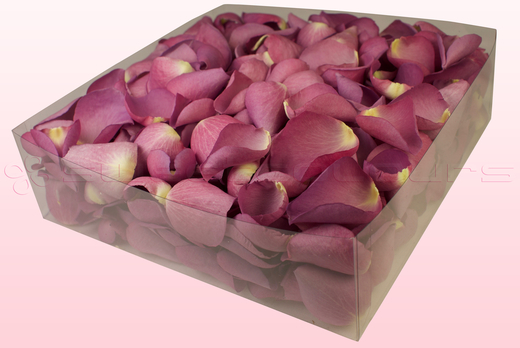 2 Litre Box Mauve Coloured Freeze Dried Rose Petals