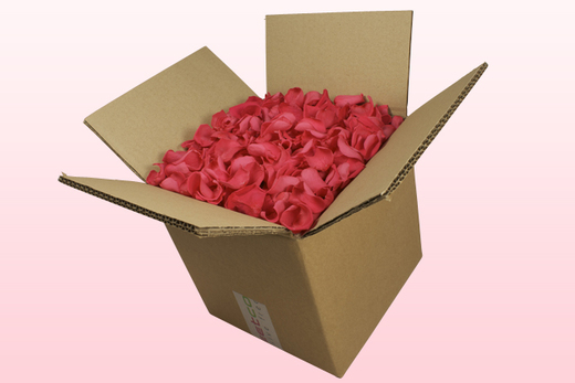 8 Litre box With Preserved Fuchsia Rose Petals
