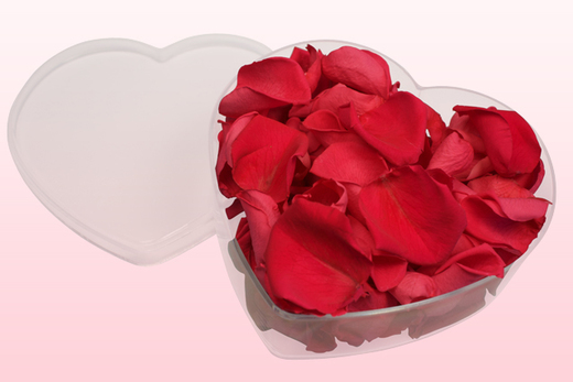 Heart Shaped Box With Fuchsia Preserved Rose Petals