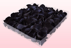 Final check 1 litre box preserved black rose petals