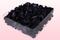 Emballage 2 litres pétales de roses conservés couleur noir