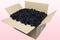 Caja de 24 litros con pétalos de rosa preservados de color negro.