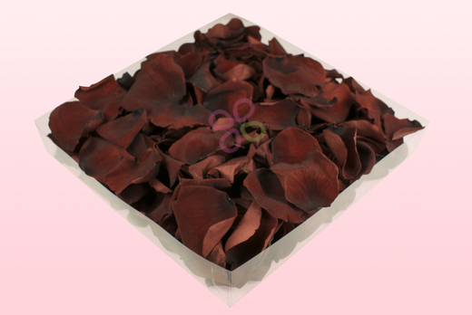 1 Litre Box Of Preserved Chocolate Rose Petals