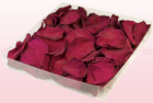 Final check 1 litre box preserved rose petals cerise pink