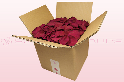 8 Litre box With Preserved Cerise Pink Rose Petals