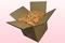 Caja de 8 litros con pétalos de rosa preservados de color melocotón.