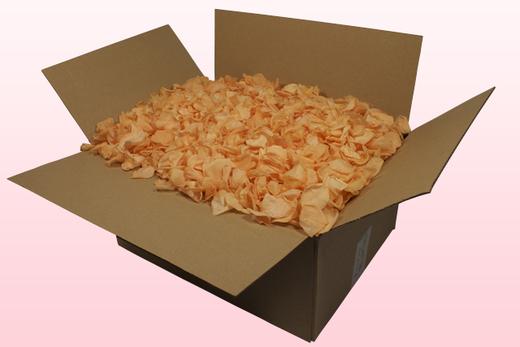 Caja de 24 litros con pétalos de rosa preservados de color melocotón.