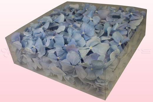 2 Liter Verpackung Hortensienblätter in der Farbe Hellblau