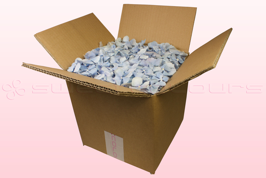 8 Litre Box With Baby Blue Freeze Dried Hydrangea Petals