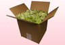 8 litre box with green freeze dried hydrangea petals