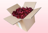 8 Litre Box Burgundy Freeze Dried Rose Petals