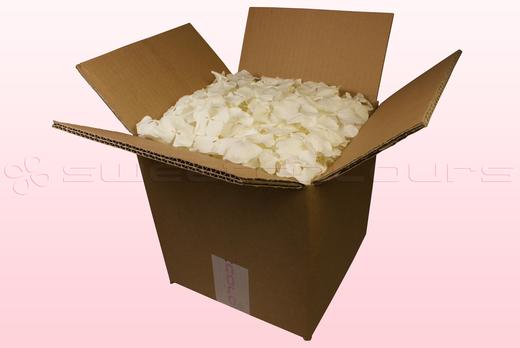 Confezione da 8 litri con petali di ortensia di colore bianco.