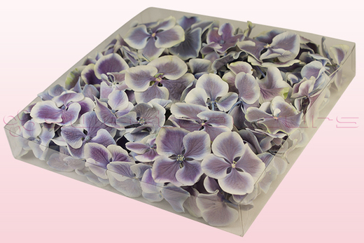 1 Litre Box Of Freeze Dried Lilac & White Hydrangea Petals
