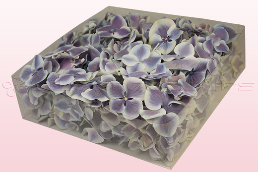 2 Litre Box Of Freeze Dried Lilac & White Hydrangea Petals