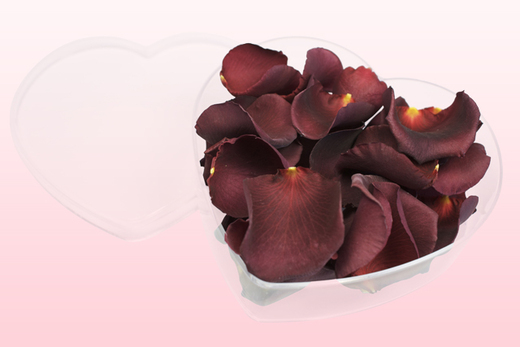 Heart Shaped Box With Burgundy Freeze Dried Rose Petals