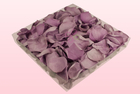 Final check 1 litre box preserved rose petals lavender