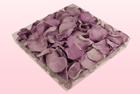 Final check 1 litre box preserved rose petals lavender