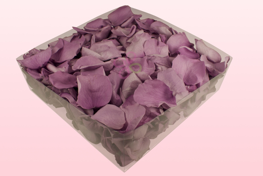2 Litre Box Lavender Coloured Preserved Rose Petals