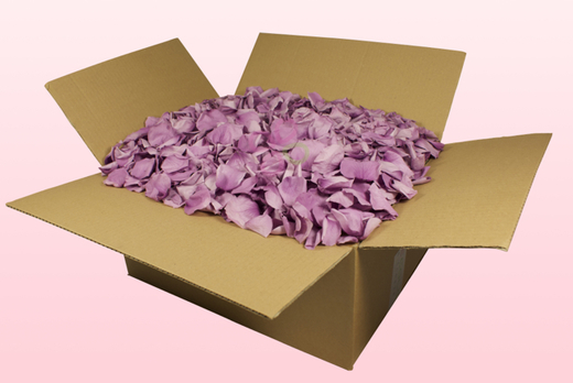 24 Litre Box With Preserved Lavender Coloured Rose Petals