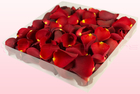 Final check freeze dried rose petals  1 litre box  red  sweet colours