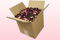 8 Litre Box Ruby Red Freeze Dried Rose Petals