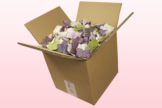 8 Litre Box With Cheap Mixed Hydrangea Petals