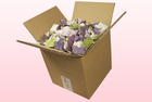 Final check 8 litre box with cheap mixed freeze dried hydrangea petals