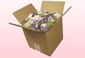 Confezione da 8 litri con petali di ortensia economici di colore assortito