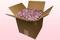 8 Liter Karton Mit Lilafarbige Hortensienblätter