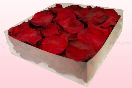 2 Litre Box With Dark Red Preserved Rose Petals