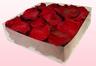 Confezione da 2 litri con petali di rosa stabilizzata di colore rosso scuro.