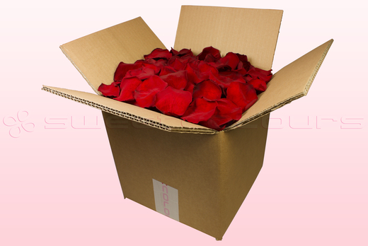 8 Liter Karton konservierte Rosenblätter in der Farbe Dunkelrot